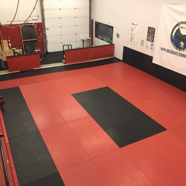Overview of the BJJ mats
